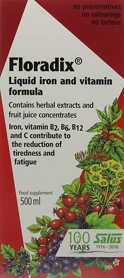 Picture of Floradix Iron & Vitamin Formula Liquid 500ml