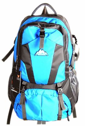 Picture of Men Travel Bags Waterproof Resin Mesh System Outdoor Camping Travel Hiking Backpacks Bag Blue