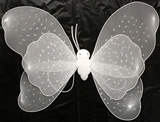 Picture of BUTTERFLY WING WHITE