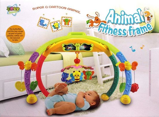 Picture of Baby Animal Fitness Frame Learning Ability Senses Activity Cognitive Ability