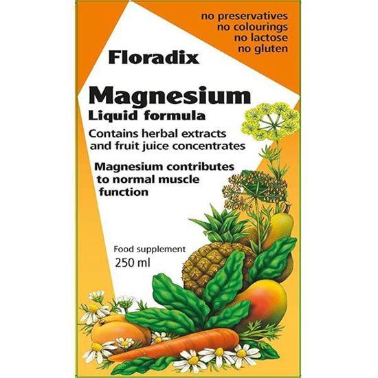 Picture of Floradix Magnesium Liquid Mineral Supplement 250ml
