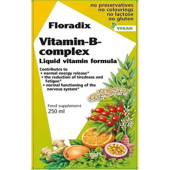 Picture of Salus Floradix Vitamin-B-Complex - 250ml